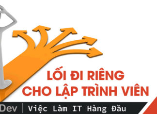 lam-sao-de-lap-trinh-vien-tim-duoc-loi-di-rieng-cho-minh