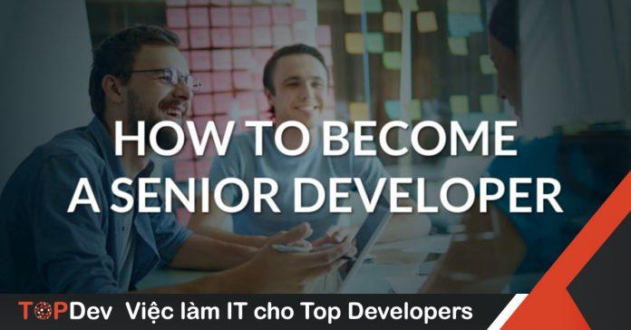 senior developer job description
