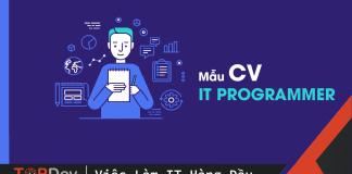 IT Programmer CV