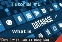 Database là gì? Các kiểu Database phổ biến và ứng dụng