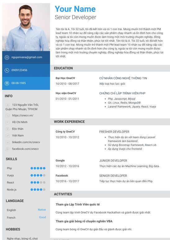 CV ngành IT