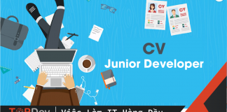 CV Junior Developer