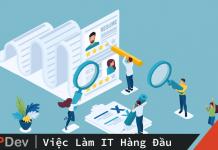 CV IT Developer