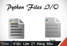 File I/O trong Python