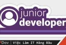 junior developer là gì