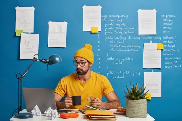 web developer freelancer